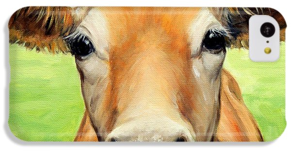 Sweet Jersey Cow In Green Grass IPhone 5c Case by Dottie Dracos