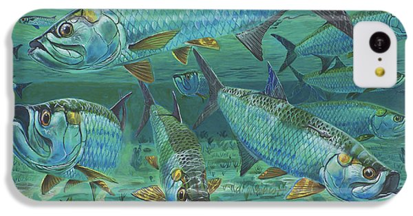 Tarpon Rolling In0025 IPhone 5c Case by Carey Chen