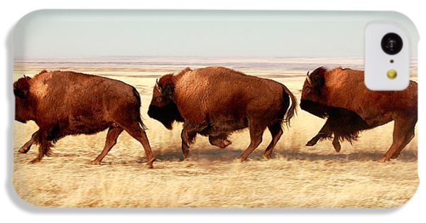 Tatanka IPhone 5c Case by Todd Klassy