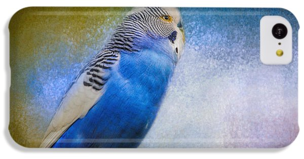 The Budgie Collection - Budgie 2 IPhone 5c Case by Jai Johnson