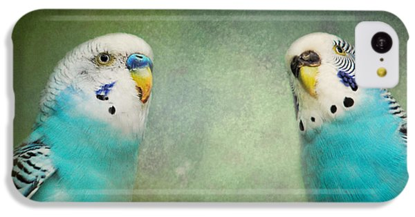 The Budgie Collection - Budgie Pair IPhone 5c Case by Jai Johnson