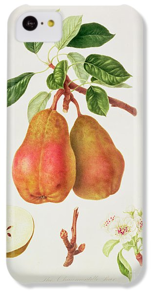 The Chaumontelle Pear IPhone 5c Case by William Hooker