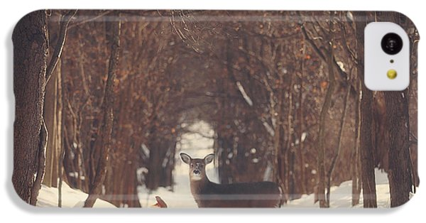 The Forest Of Snow White IPhone 5c Case by Carrie Ann Grippo-Pike