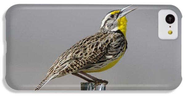 The Meadowlark Sings  IPhone 5c Case by Jeff Swan