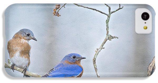 The Presence Of Bluebirds IPhone 5c Case by Bonnie Barry
