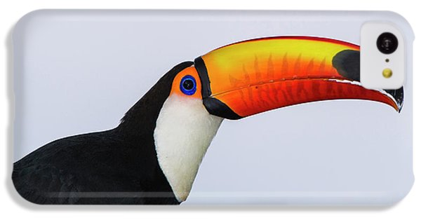 Toco Toucan (ramphastos Toco IPhone 5c Case by Pete Oxford