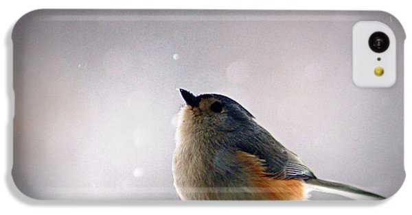 Tufted Titmouse IPhone 5c Case by Cricket Hackmann