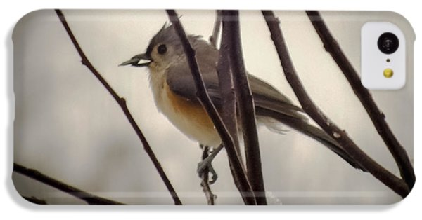Tufted Titmouse IPhone 5c Case by Karen Wiles