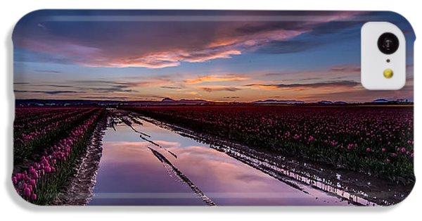 Tulips And Purple Skies IPhone 5c Case by Mike Reid