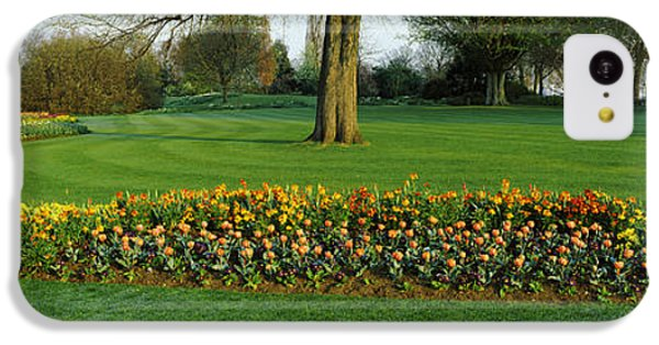 Tulips In Hyde Park, City IPhone 5c Case by Panoramic Images