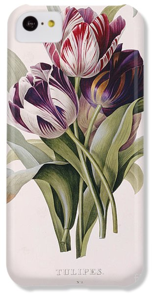 Tulips IPhone 5c Case by Pierre Joseph Redoute