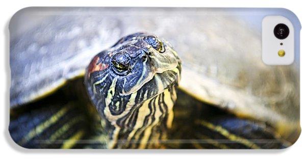 Turtle IPhone 5c Case by Elena Elisseeva