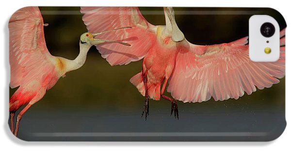 Usa, Florida, Tampa Bay, Alafaya Banks IPhone 5c Case by Jaynes Gallery