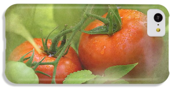 Vine Ripened Tomatoes IPhone 5c Case by Angie Vogel