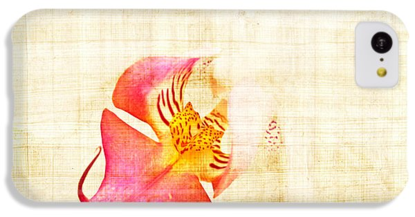 Vintage White Orchid IPhone 5c Case by Delphimages Photo Creations