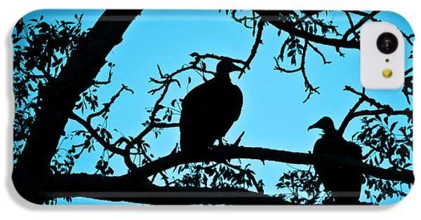 Vultures IPhone 5c Case by Delphimages Photo Creations