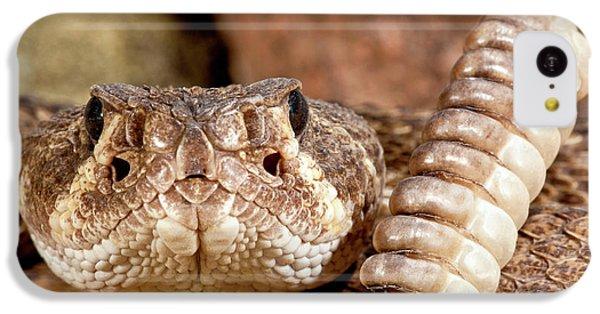 Western Diamondback Rattlesnake IPhone 5c Case by David Northcott