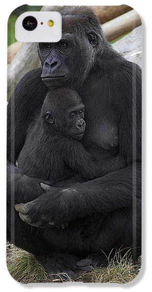 Western Lowland Gorilla Mother And Baby IPhone 5c Case by San Diego Zoo