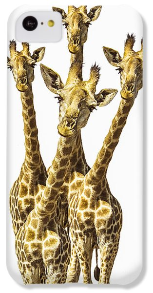 What Are You Looking At? IPhone 5c Case by Diane Diederich
