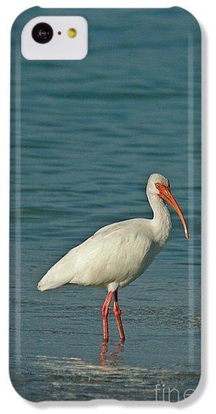 White Ibis IPhone 5c Case by Cindi Ressler