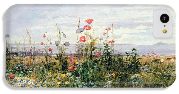 Wildflowers With A View Of Dublin Dunleary IPhone 5c Case by A Nicholl