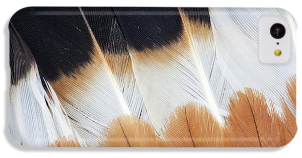 Wing Fanned Out On Northern Lapwing IPhone 5c Case by Darrell Gulin