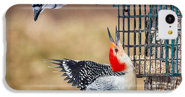 Woodpeckers And Blue Jays Square IPhone 5c Case by Bill Wakeley