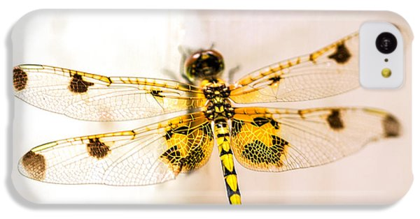Yellow Dragonfly Pantala Flavescens IPhone 5c Case by Iris Richardson