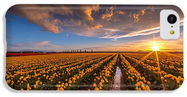 Yellow Fields And Sunset Skies IPhone 5c Case by Mike Reid