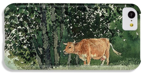 Cow In Pasture IPhone 5c Case by Winslow Homer