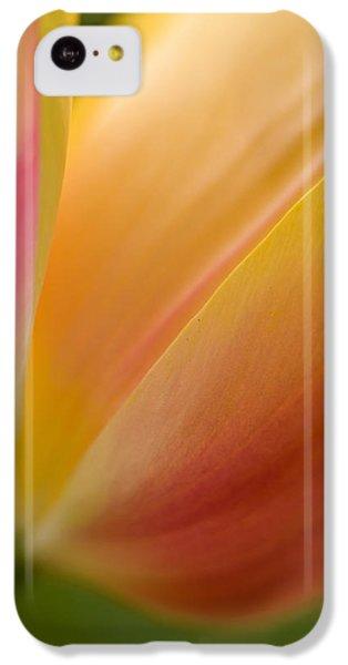 April Grace IPhone 5c Case by Mike Reid