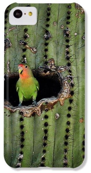 Home Sweet Home  IPhone 5c Case by Saija  Lehtonen