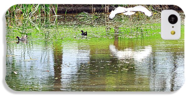Ibis Over His Reflection IPhone 5c Case by Kaye Menner