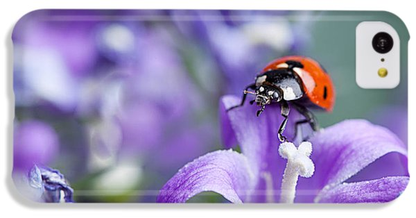 Ladybug And Bellflowers IPhone 5c Case by Nailia Schwarz