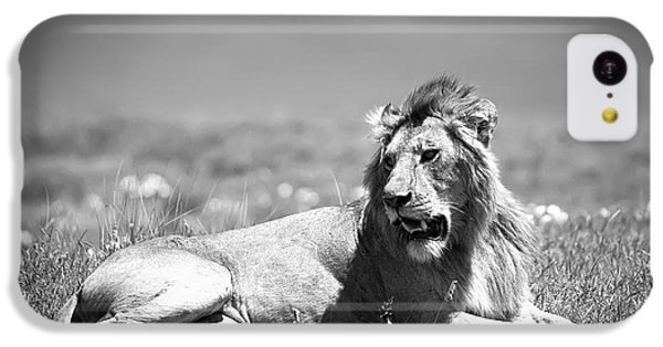 Lion King In Black And White IPhone 5c Case by Sebastian Musial
