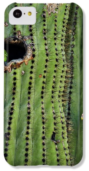 Lovebirds And The Saguaro  IPhone 5c Case by Saija  Lehtonen