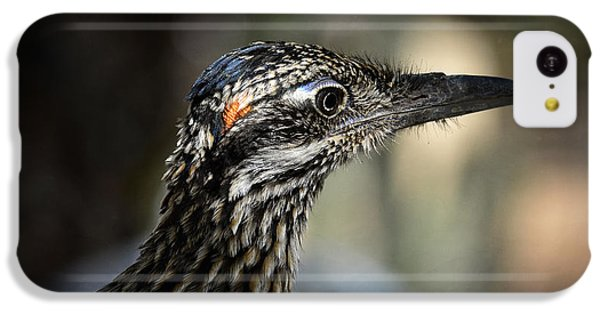 Portrait Of A Roadrunner  IPhone 5c Case by Saija  Lehtonen