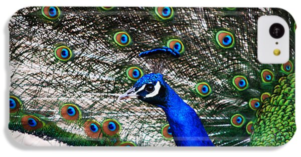 Proud Peacock IPhone 5c Case by Sheryl Cox