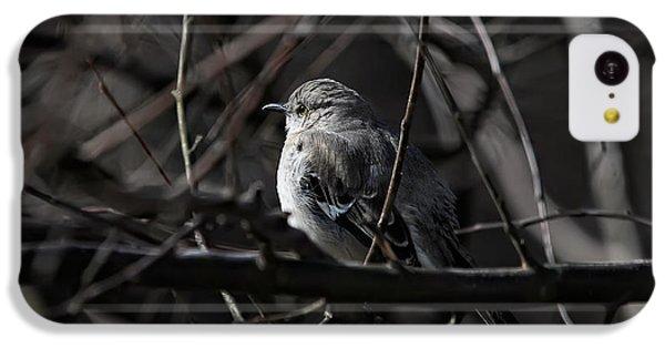 To Kill A Mockingbird IPhone 5c Case by Lois Bryan
