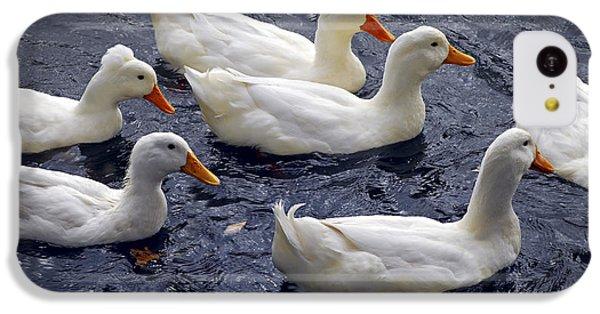 White Ducks IPhone 5c Case by Elena Elisseeva