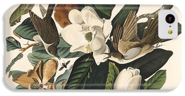 Black-billed Cuckoo IPhone 5c Case by John James Audubon