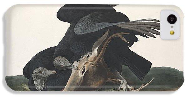 Black Vulture IPhone 5c Case by John James Audubon