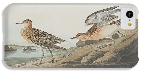 Buff-breasted Sandpiper IPhone 5c Case by John James Audubon