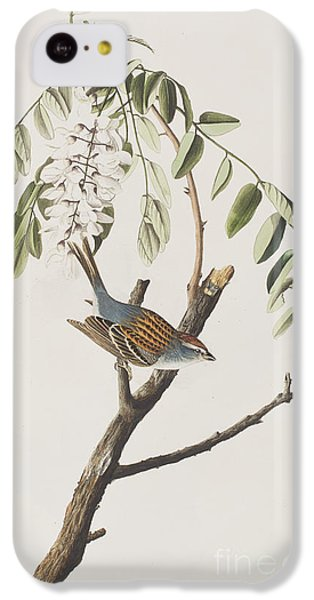 Chipping Sparrow IPhone 5c Case by John James Audubon