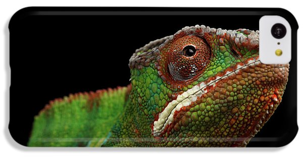 Closeup Head Of Panther Chameleon, Reptile In Profile View Isolated On Black Background IPhone 5c Case by Sergey Taran