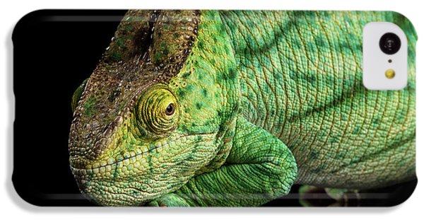 Closeup Parson Chameleon, Calumma Parsoni Orange Eye On Black IPhone 5c Case by Sergey Taran