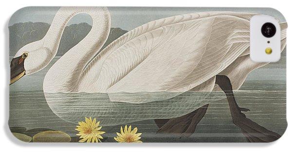 Common American Swan IPhone 5c Case by John James Audubon