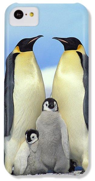 Emperor Penguin Aptenodytes Forsteri IPhone 5c Case by Konrad Wothe