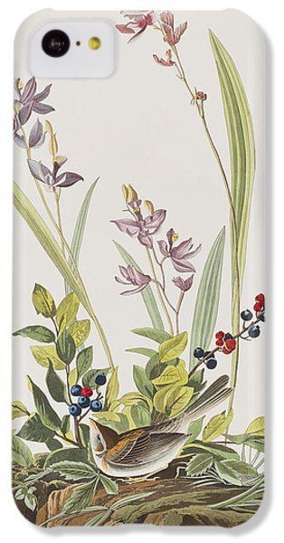 Field Sparrow IPhone 5c Case by John James Audubon