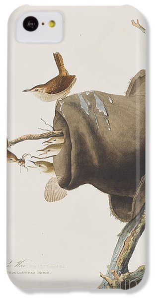 House Wren IPhone 5c Case by John James Audubon